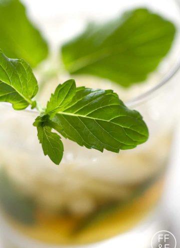 Mint Julep from foodfashionandfun.com
