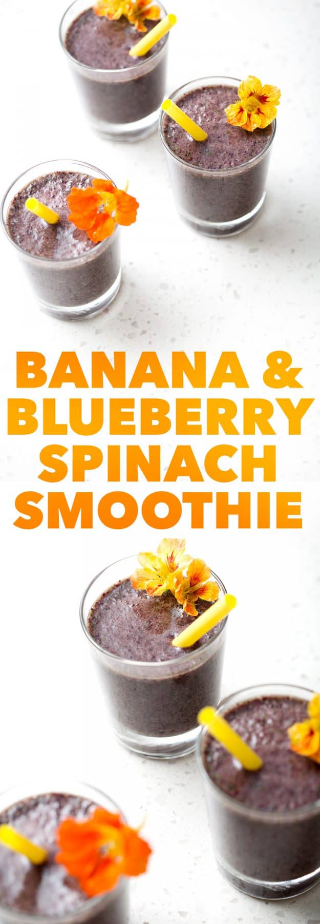 This Banana and Blueberry Spinach Smoothie is a healthy snack or addition to a meal. It's a fruity smoothie filled with leafy greens that your kids (big or small) will enjoy. This recipe is allergy friendly (gluten, dairy, shellfish, nut, egg, and soy free) and suits the autoimmune protocol (AIP) and paleo diets.