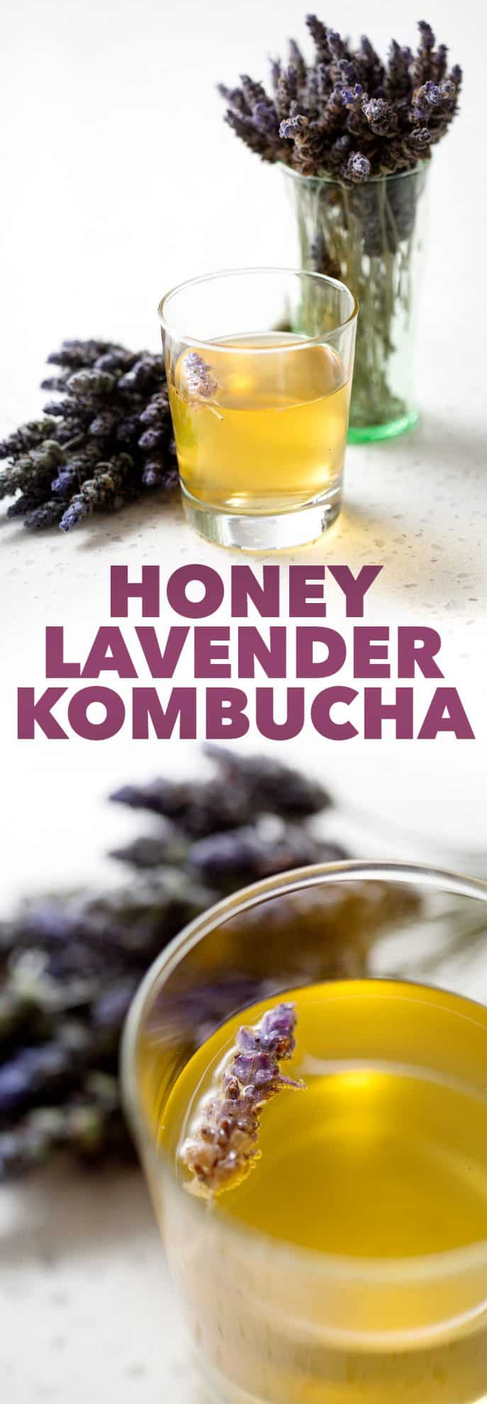 Honey Lavender Kombucha in glass with bunches of lavender on white background