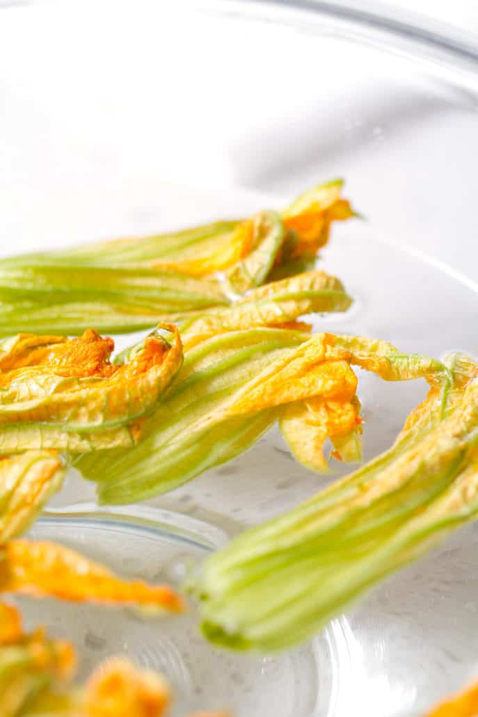 squash blossom floating in water