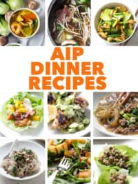 multiple food photos with the text aip dinner recipes