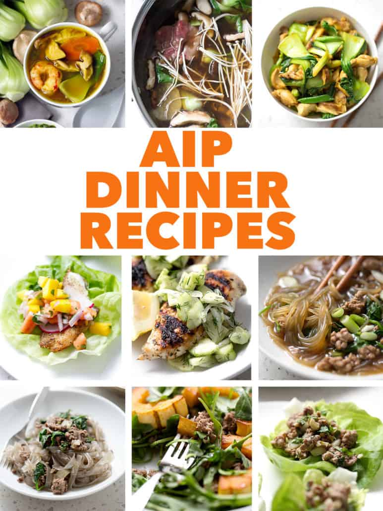 multiple food photos with text aip dinner recipes
