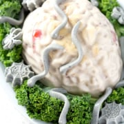 brain shaped jello on bed of kale on white background