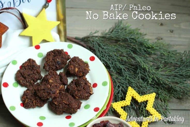 Paleo AIP No Bake Cookies