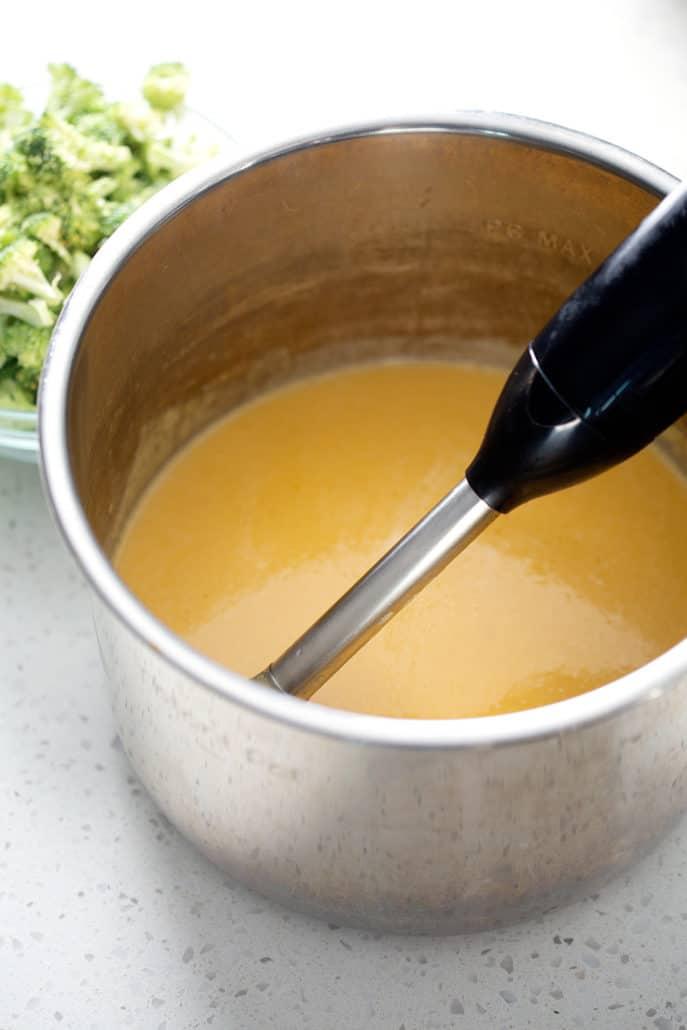 immersion blender in instant pot